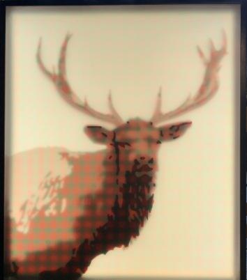 PLAID ELK, 2017 (48x40)